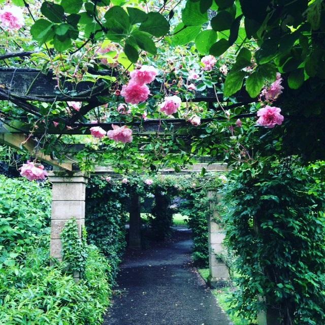 Heigham Park Norwich